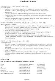 resume examples it professional 2 sample template top