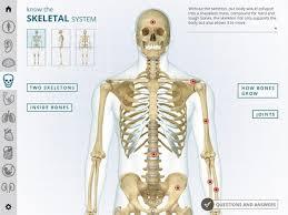 Google Body Anatomy I Wow Atlas Human Body Android Apps On Google Play