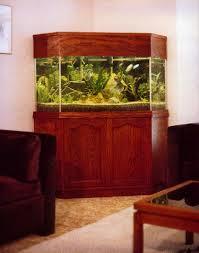 Fish Tank Reception Desk Aqualease Calgary U0027s Premier Custom Aquarium Lease U0026 Maintenance