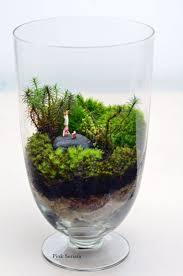 170 best world of terrariums images on pinterest terrarium ideas