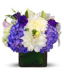 newport florist purple wishes by newport florist nf245 in newport ca