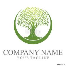 green oak tree logo stock image and royalty free vector files on