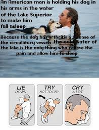 Try Not To Cry Meme - lie down try not to cry cry a lot an emotional meme collection