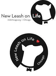 salt life decal logotypes u0026 branding celiarosemarks com