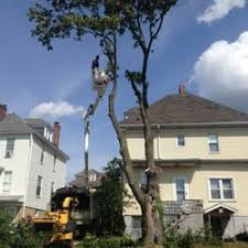 ken s tree service tree services 223 muse bishop rd canonsburg