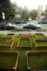 Urban Veggie Garden - the little urban veggie garden