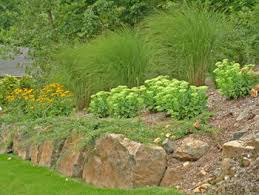 landscape boulders for walls and accents