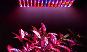 spectrum 225 led plant grow light set groupon