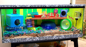 Hamster Cages Cheap Happy Healthy Hamsters Faq Hamster Cages Natural And Glass