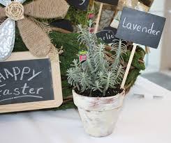 Painting Garden Pots Ideas Herb Filled Moss Basket Diy Gift Idea