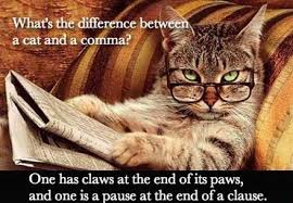 Comma Meme - dopl3r com memes whats the difference betwe a cat and a comma