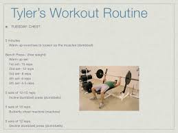 Bench Workout Routine Free Weight Bench Workout Routine Eoua Blog