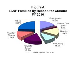 characteristics and financial circumstances of tanf recipients