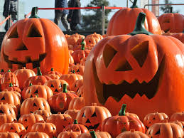 halloween pumpkins on screen the best film appearances by the