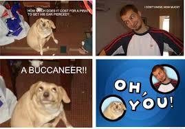 Oh You Dog Meme - oh you album on imgur