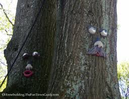 tree face tree faces are a fun way to add surprise and delight to your