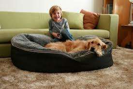 wondrous oversized dog bed 57 big dog beds amazon dog furniture