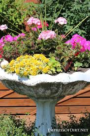 Bird Bath Decorating Ideas Best 25 Bird Bath Planter Ideas On Pinterest Decorative Cinder