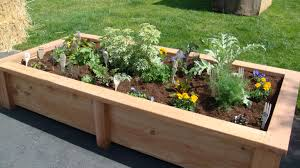 plant stunning raised garden bed ideas low maintenance garden