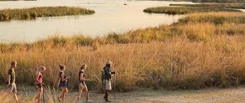 Azura Azura Selous Game Reserve Tanzania Selous Game Reserve Tanzania