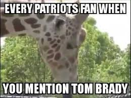 Patriots Suck Meme - every patriots fan when you mention tom brady youtube