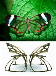 Furniture Cool Design Of Butterfly Chair Target For Charming Home - Butterfly chair designer