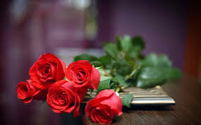 Beautiful Bouquet Of Flowers Most Beautiful Bouquet Of Red Roses Urldircom