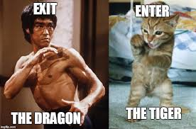Bruce Lee Meme - fear me rawrrr exit the dragon enter the tiger funny