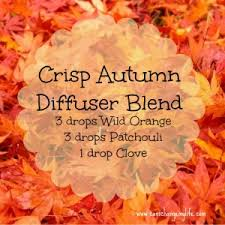 crisp autumn diffuser blend put it in the diffuser for