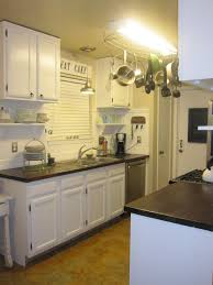 Birch Kitchen Cabinets by Kitchen Image Of Dark Birch Kitchen Cabinets Kitchen Countertop
