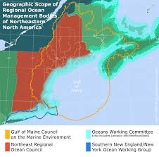 Map Of The Northeast Ecosystem Based Management For Atlantic Herring U0026 Oyster Reefs
