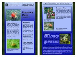 of hawaii master gardener program