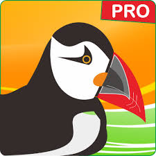 puffin pro apk guide new puffin web browser pro tips 2017 1 0 0 apk for android