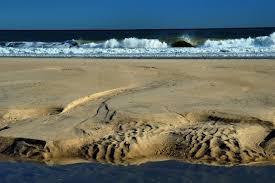 slideshow 371 02 a sandbar in nauset beach in cape cod eastham
