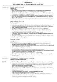 resume templates account executive position salary in nfl what is a franchise media manager resume sles velvet jobs
