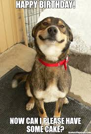 Happy Birthday Cake Meme - happy birthday now can i please have some cake meme good dog