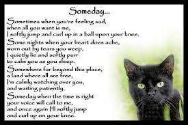 cat memorial beautiful black cat memorial pet loss bereavement rainbow bridge