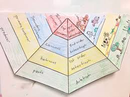 10 9 2013 begin energy pyramid foldable science life ecosystems