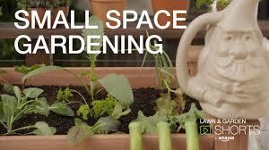 amazon lawn u0026 garden shorts growing veggies in a small space