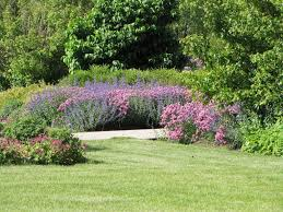 our history congdon gardens in 2003 congdon park s quiet pond and small flower garden experienced an important change with an initiative by the delavan darien rotary that created what