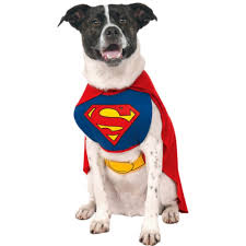 pet dog puppy superhero fancy dress costume coat halloween