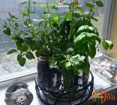 Window Sill Herb Garden Designs 663 Best Simple Garden Ideas Images On Pinterest Simple Garden