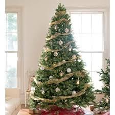 balsam christmas tree alpine balsam fir tree wayfair