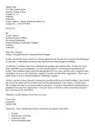 brand director cover letter