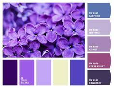 Purple Color Shades Brown Color Color Matching Color Of Greens Dark Purple Green