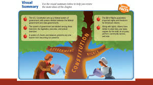 citizenship and the constitution ppt video online download