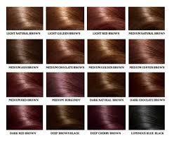 light golden brown hair color chart human hair color ring chart for black women high temperature fiber