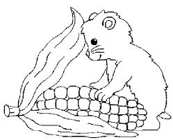 Coloriage Hamster en train de manger dessin gratuit à imprimer