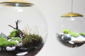 Glass Globes For Garden These Amazing Terrarium Lamps Grow Plants In Even The Darkest