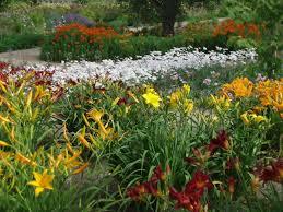 Flower Garden Ideas Pictures Perennial Garden Design Ideas Diy